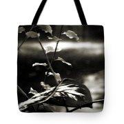 Plant 8657 Tote Bag