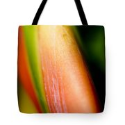 Plant Abstract IIi Tote Bag
