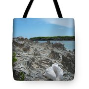 Plant And Shell On A Dominican Shore Tote Bag