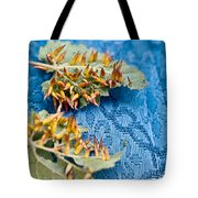 Plant Galls Tote Bag