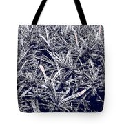 Plant Power 3 Tote Bag by Eikoni Images