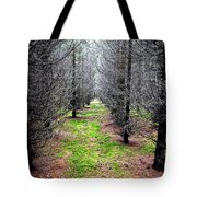 Planted Spruce Forest Tote Bag