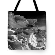 Plants And Birds And Rocks And Things Tote Bag