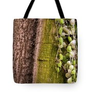 Plants And Trees Hawaii Tote Bag