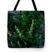 Plants Grow Anywhere Tote Bag