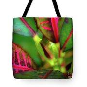 Plants In Hawaii Tote Bag