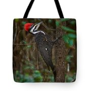 Plastic Wrapped Pileated Woodpecker Tote Bag