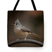 Plastic Wrapped Titmouse Tote Bag