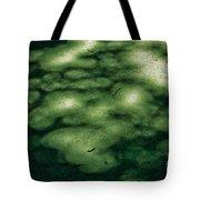 Platanus Hispanica Tote Bag
