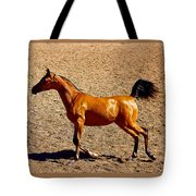 Playful Canter Tote Bag
