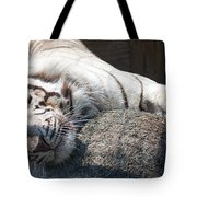 Playful Tiger Tote Bag