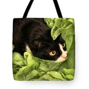 Playful Tuxedo Kitty In Green Tissue Paper Tote Bag