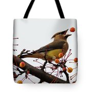 Playing Catch Tote Bag