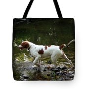 Playing In The Creek Tote Bag
