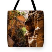 Playing The Slots In Zion Tote Bag