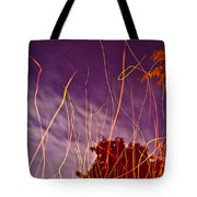 Playing With Fire  I Tote Bag