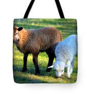 Time For Play Tote Bag