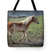 Playtime Is Over  2534 Tote Bag