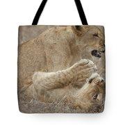 Playtime Tote Bag