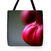 Pleasant... Tote Bag