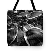 Please Don't Leave Me Alone Tote Bag