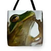 Please Not In A Frogs Eye Tote Bag