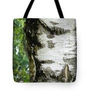 Plentiful Patterns Tote Bag