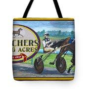 Pletchers Racing Mural Shipshewana Tote Bag