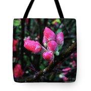 Plum Blossom 1 Tote Bag