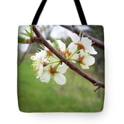 Plum Blossoms In Spring Tote Bag