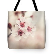 Plum Blossoms Tote Bag by Lisa Russo
