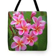 Plumeria After The Rain II Tote Bag