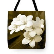 Plumeria - Brown Tones Tote Bag