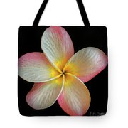 Plumeria Flower On Black Tote Bag