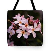 Plumeria Flowers Tote Bag