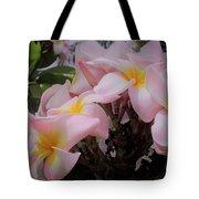 Plumeria In Pink 4 Tote Bag