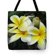 Plumeria In Yellow 3 Tote Bag