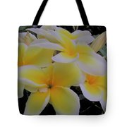 Plumeria In Yellow 4 Tote Bag
