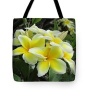 Plumeria In Yellow  5 Tote Bag