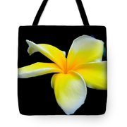 Plumeria In Yellow Tote Bag