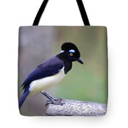 Plush Crested Jay Tote Bag