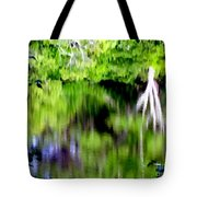 Plymouth Reflections #2 Tote Bag