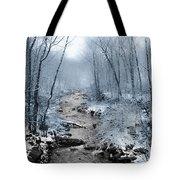 Pocono Mountain Winter Tote Bag