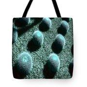 Pods Left Tote Bag