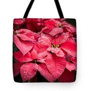 Poinsettia Morning Dew Tote Bag