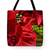 Poinsettias - Flaming Reds Tote Bag