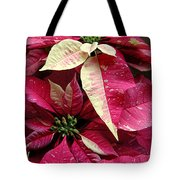 Poinsettias -  Painted And Speckled Tote Bag