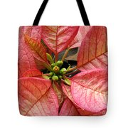Poinsettias -  Pinks In The Center Tote Bag