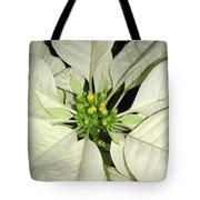 Poinsettias -  Winter White Center Tote Bag