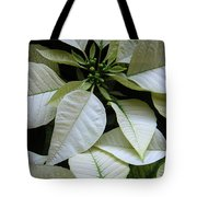 Poinsettias -  Winter Whites In Contrast Tote Bag